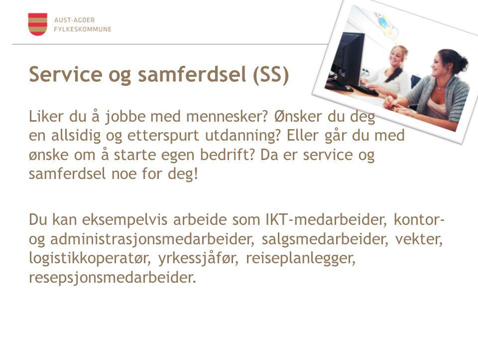 Service og samferdsel (SS)