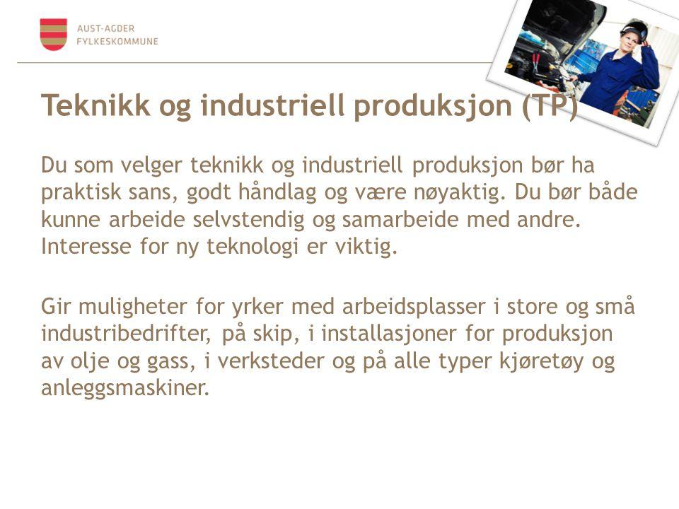 Teknikk og industriell produksjon (TP)