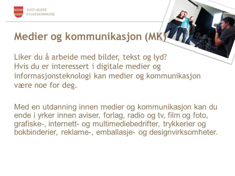 Medier og kommunikasjon (MK)
