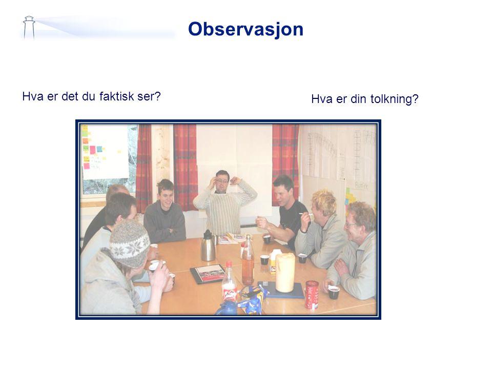 Observasjon Hva er det du faktisk ser Hva er din tolkning