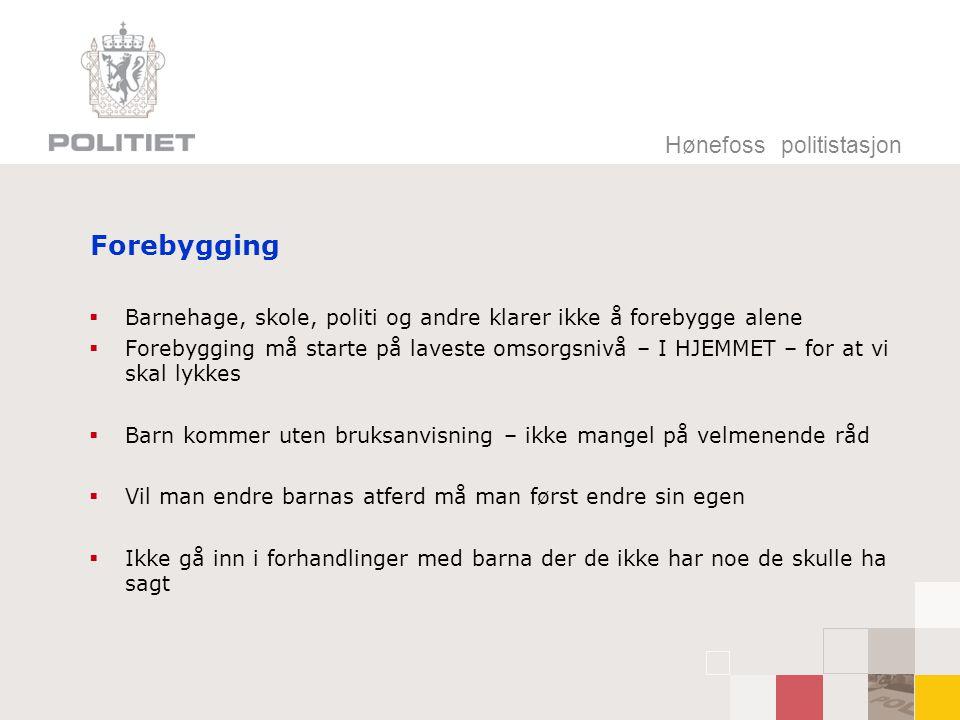 Forebygging Hønefoss politistasjon