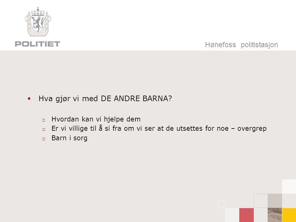 Hva gjør vi med DE ANDRE BARNA