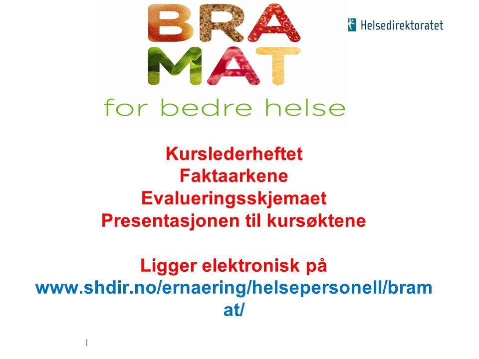Kurslederheftet Faktaarkene Evalueringsskjemaet Presentasjonen til kursøktene Ligger elektronisk på www.shdir.no/ernaering/helsepersonell/bramat/