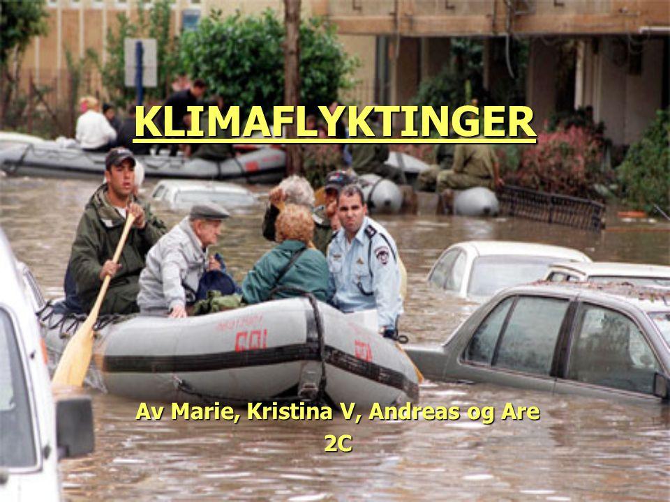 Av Marie, Kristina V, Andreas og Are 2C