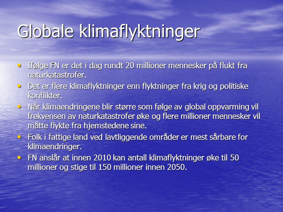 Globale klimaflyktninger