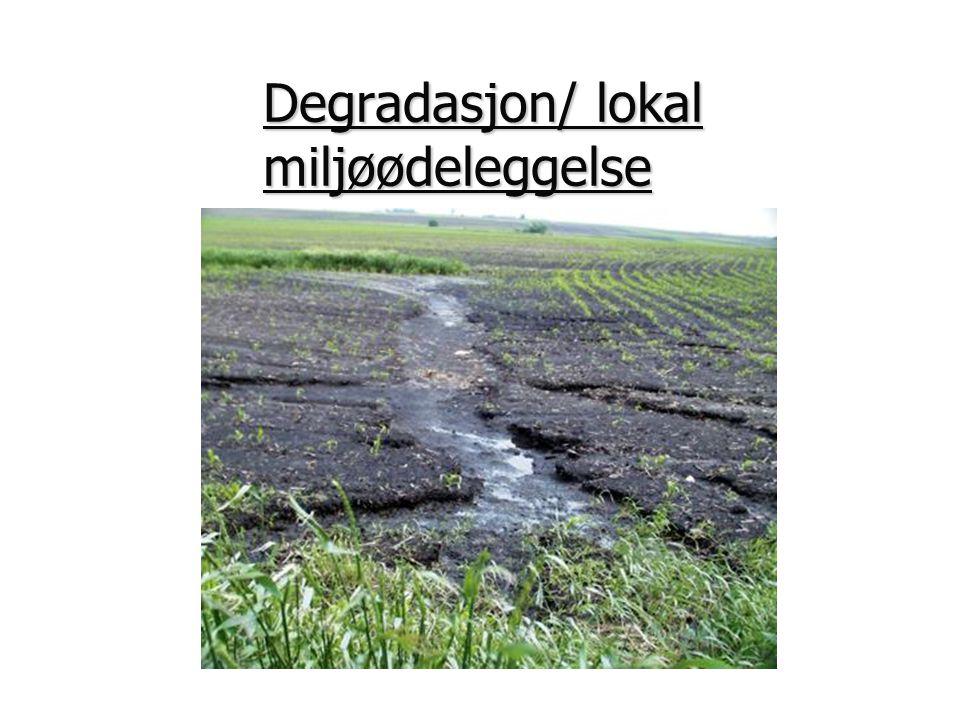 Degradasjon/ lokal miljøødeleggelse