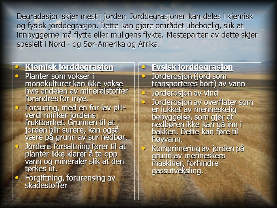 Degradasjon skjer mest i jorden
