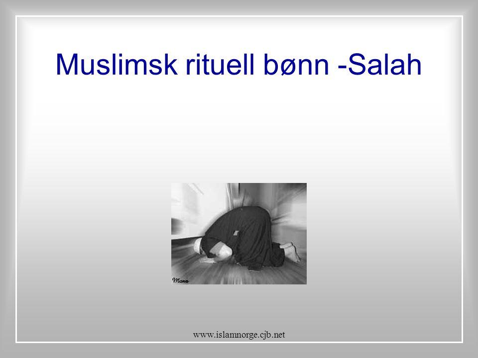 Muslimsk rituell bønn -Salah