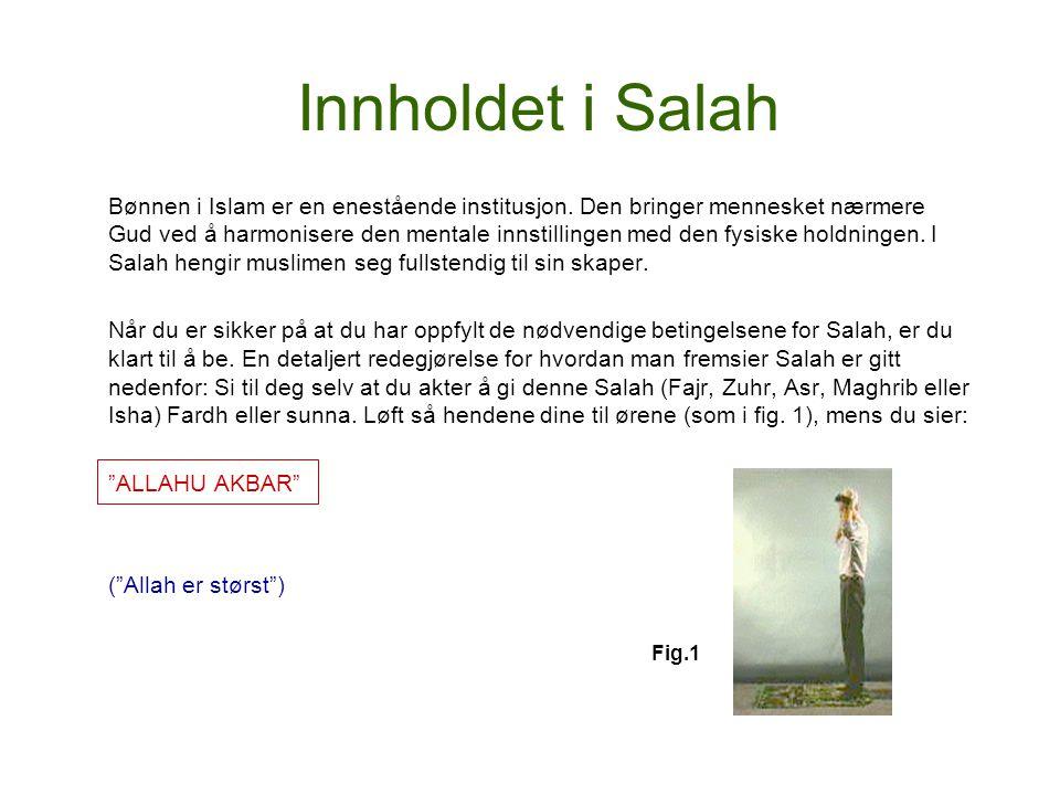Innholdet i Salah
