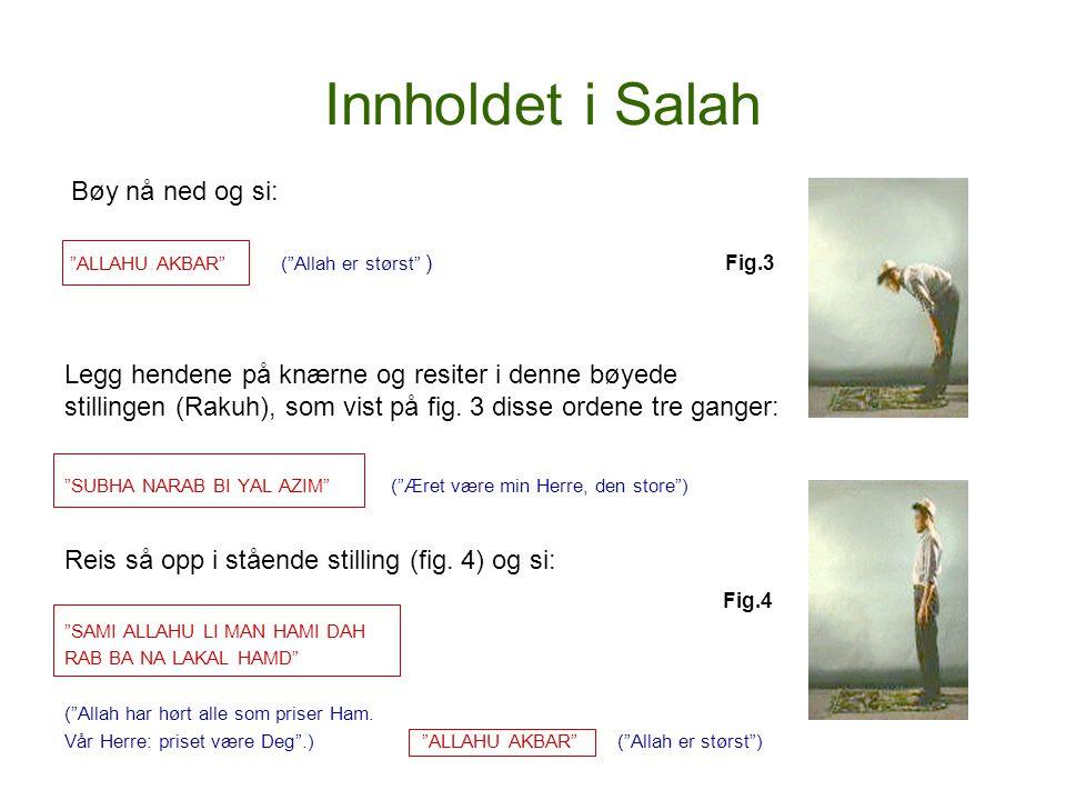 Innholdet i Salah Bøy nå ned og si:
