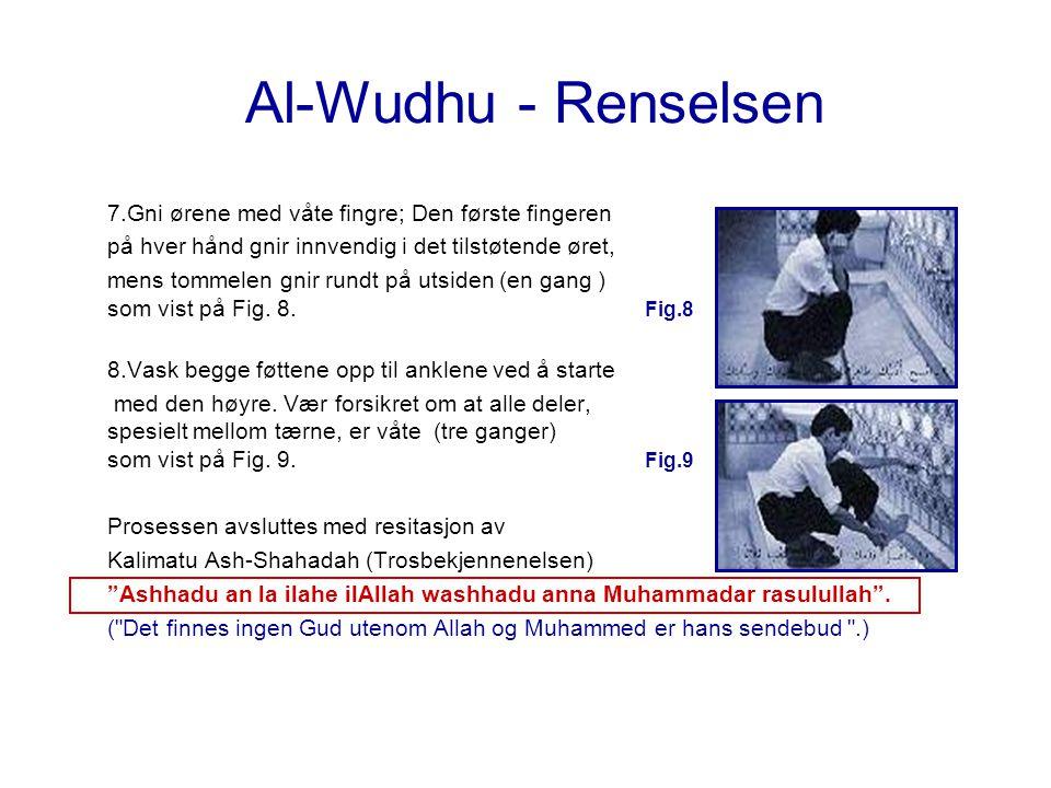 Al-Wudhu - Renselsen 7.Gni ørene med våte fingre; Den første fingeren