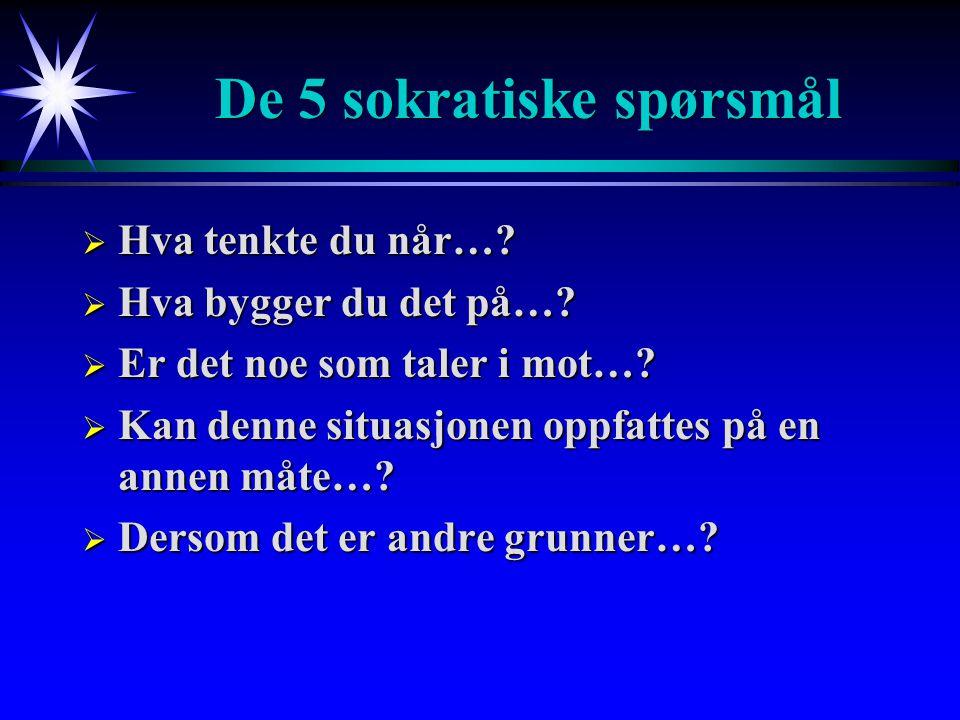 De 5 sokratiske spørsmål