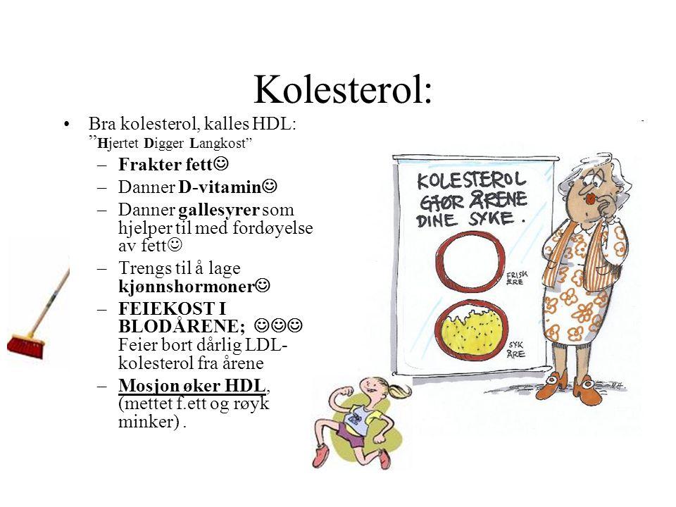 Kolesterol: Bra kolesterol, kalles HDL: Hjertet Digger Langkost