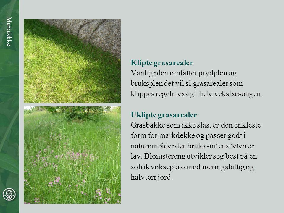 Vanlig plen omfatter prydplen og bruksplen det vil si grasarealer som