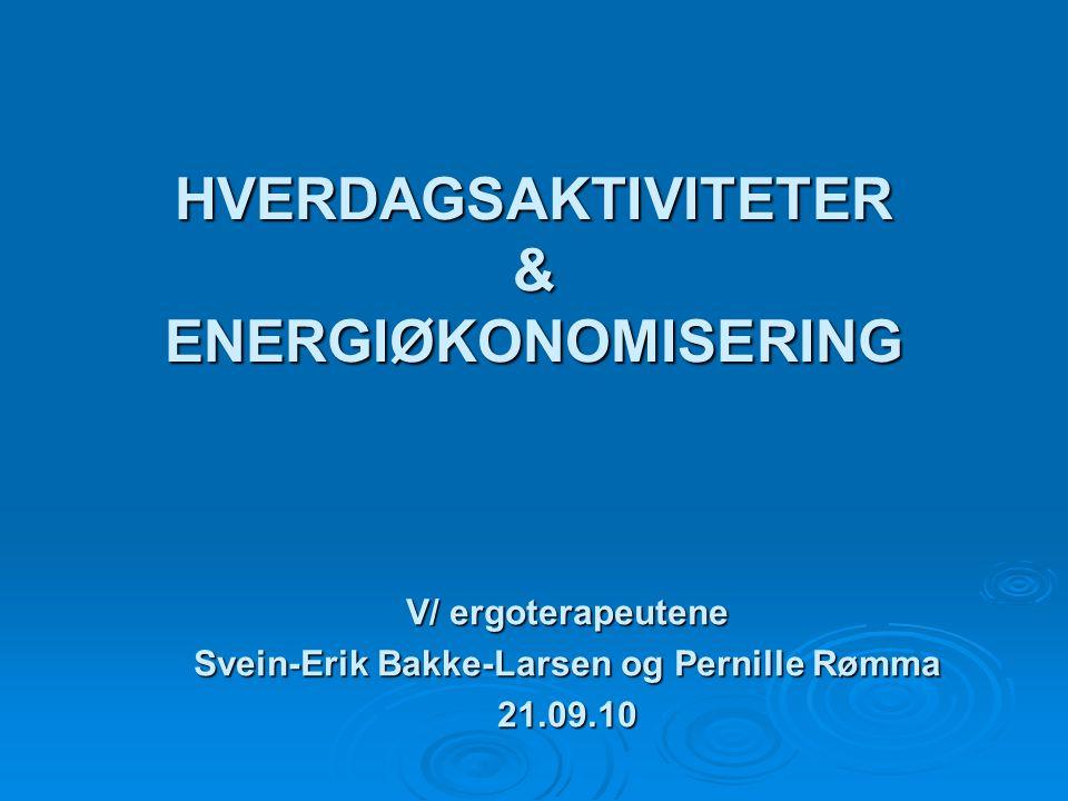 HVERDAGSAKTIVITETER & ENERGIØKONOMISERING