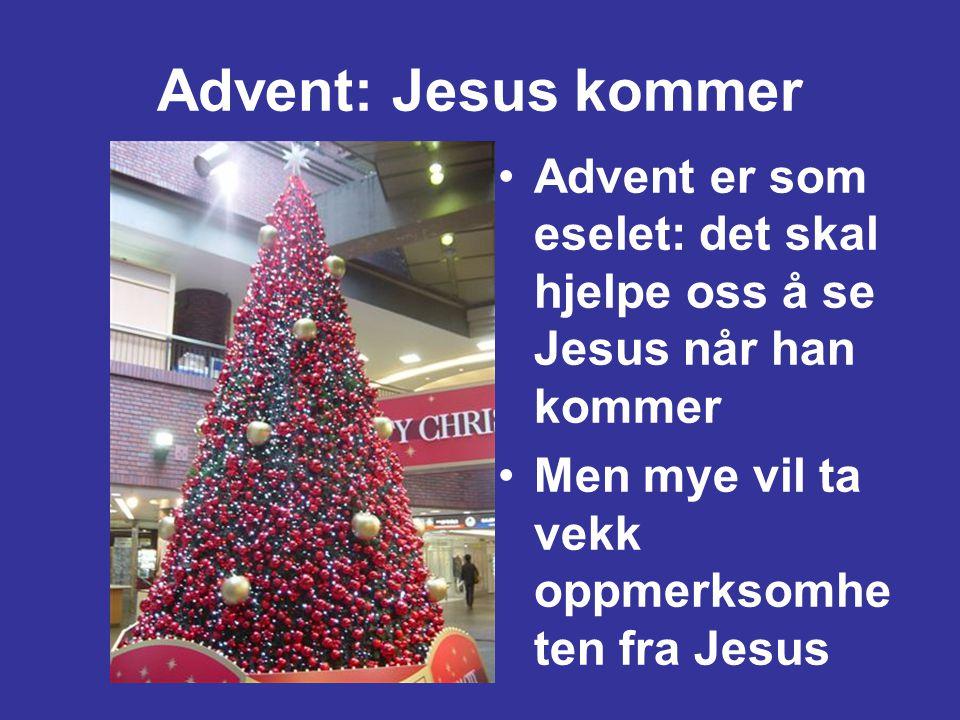 Advent: Jesus kommer Advent er som eselet: det skal hjelpe oss å se Jesus når han kommer. Men mye vil ta vekk oppmerksomheten fra Jesus.