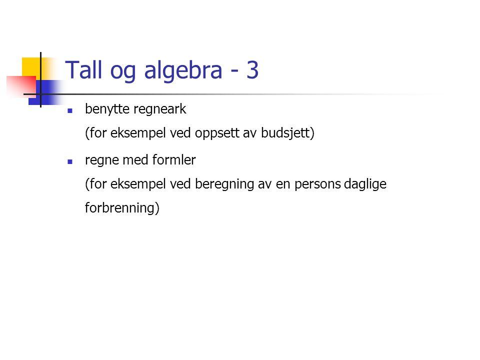 Tall og algebra - 3 benytte regneark (for eksempel ved oppsett av budsjett)