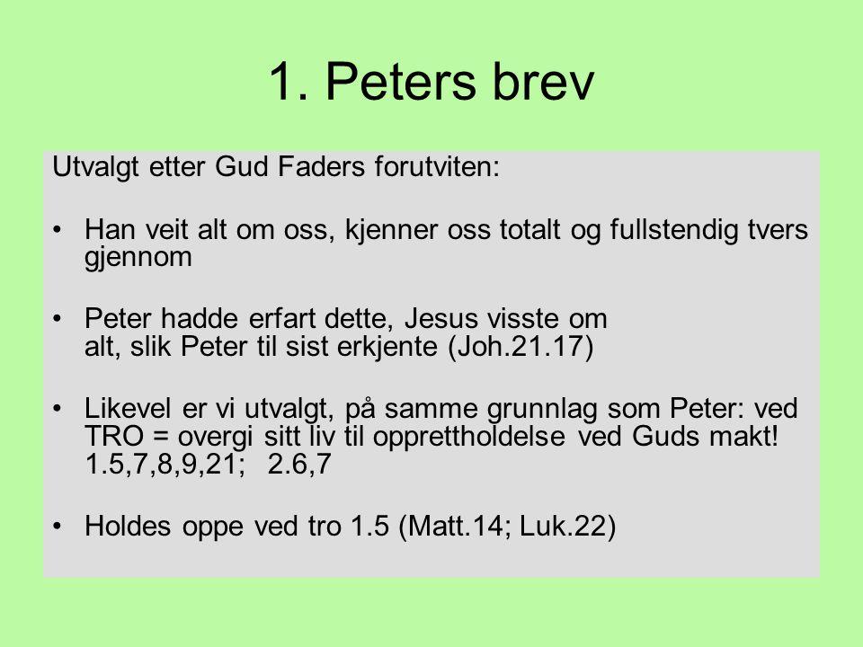 1. Peters brev Utvalgt etter Gud Faders forutviten: