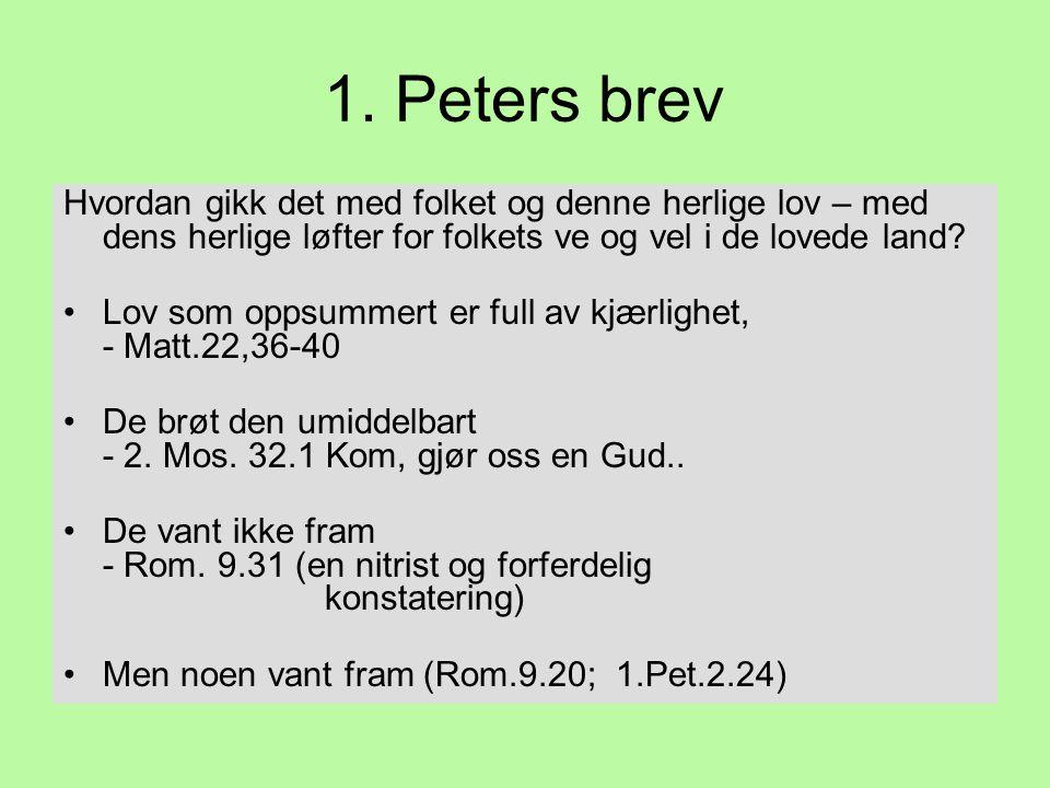 1. Peters brev Hvordan gikk det med folket og denne herlige lov – med dens herlige løfter for folkets ve og vel i de lovede land