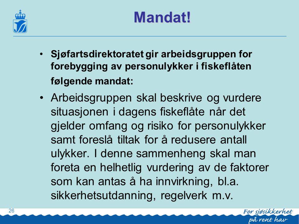 Mandat! Sjøfartsdirektoratet gir arbeidsgruppen for forebygging av personulykker i fiskeflåten følgende mandat: