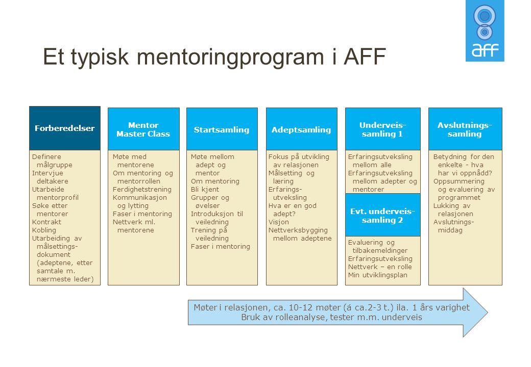 Et typisk mentoringprogram i AFF