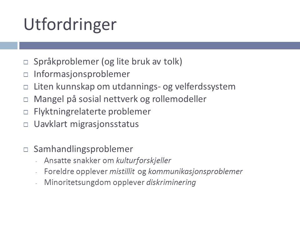 Utfordringer Språkproblemer (og lite bruk av tolk)