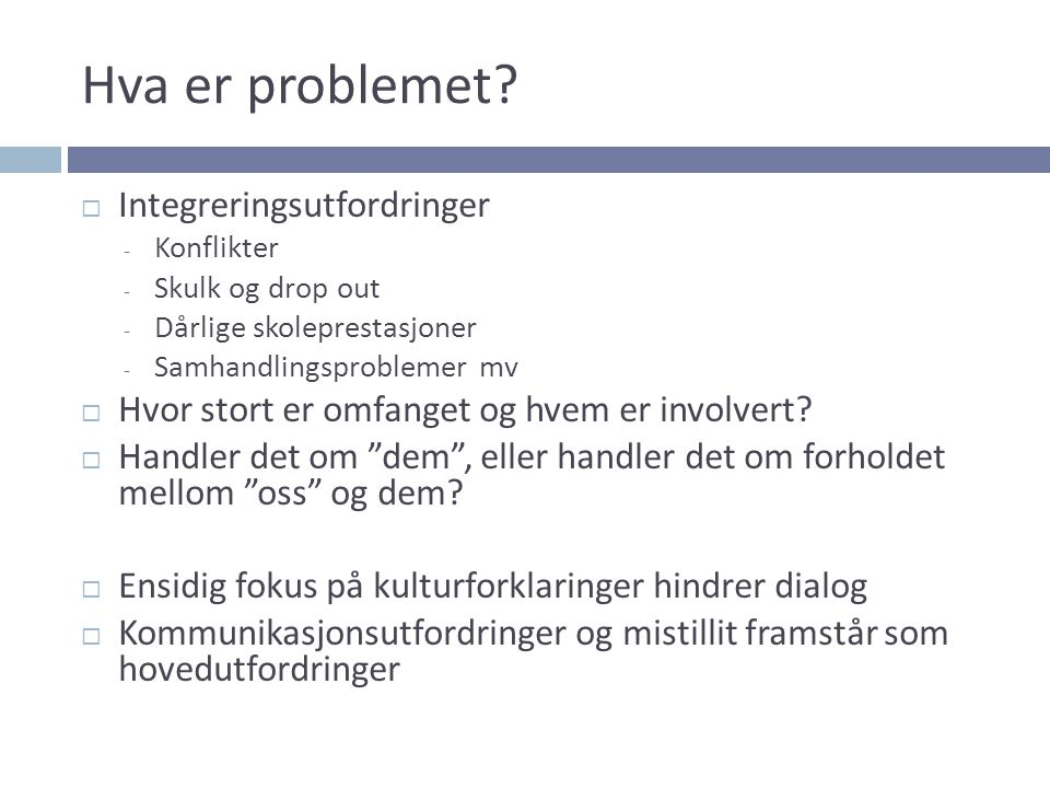 Hva er problemet Integreringsutfordringer