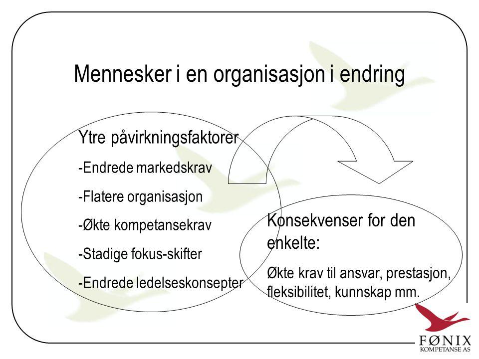 Mennesker i en organisasjon i endring