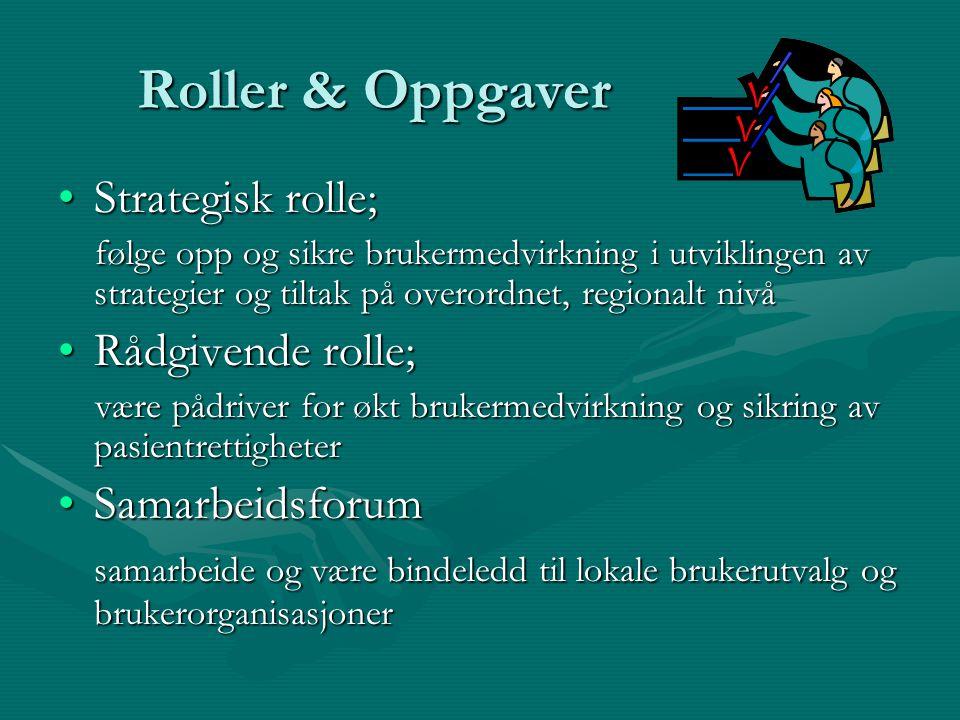 Roller & Oppgaver Strategisk rolle; Rådgivende rolle; Samarbeidsforum