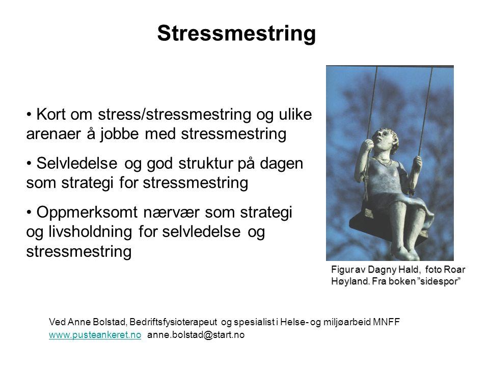 Stressmestring Kort om stress/stressmestring og ulike arenaer å jobbe med stressmestring.