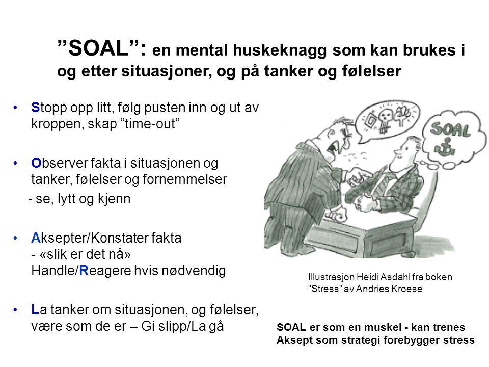 SOAL : en mental huskeknagg som kan brukes i og etter situasjoner, og på tanker og følelser