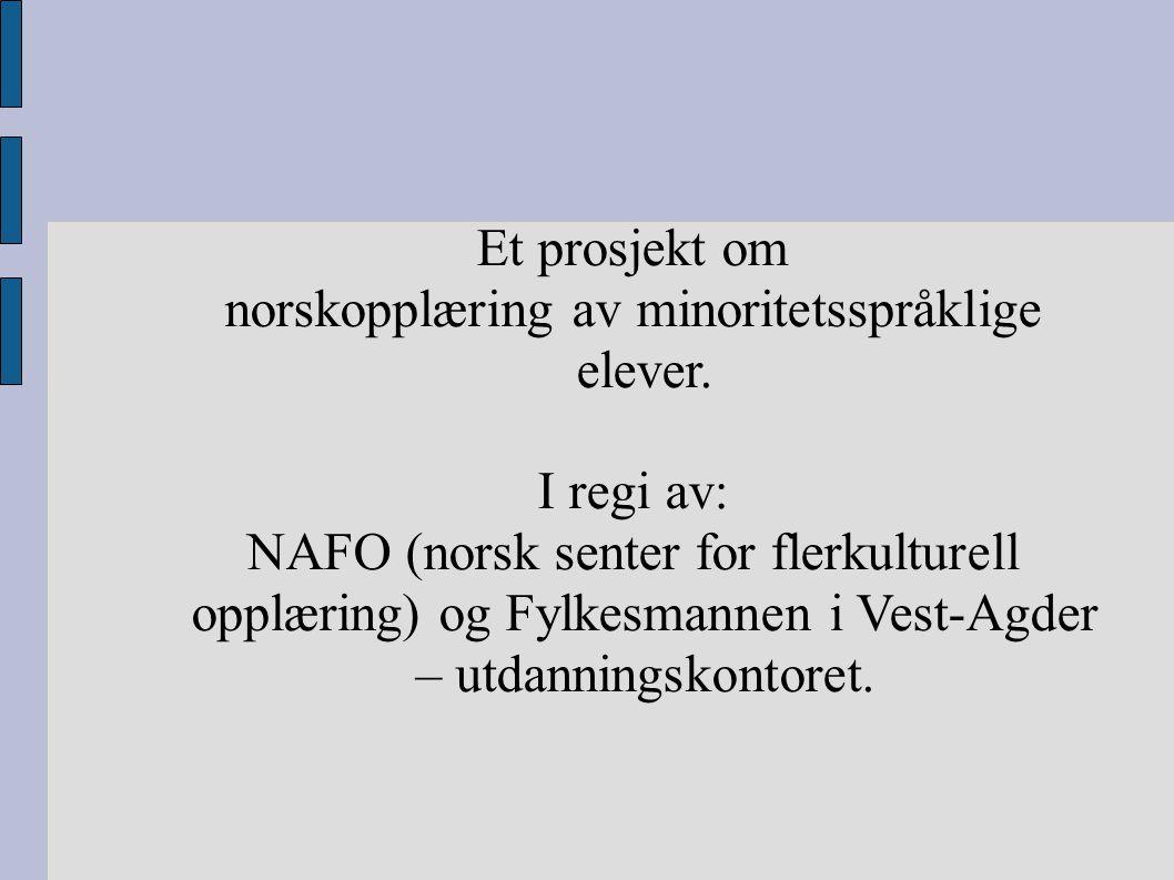 norskopplæring av minoritetsspråklige elever.