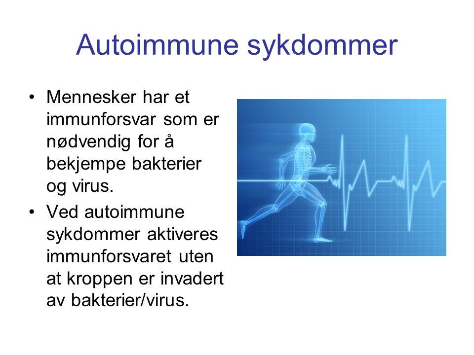 Autoimmune sykdommer Mennesker har et immunforsvar som er nødvendig for å bekjempe bakterier og virus.