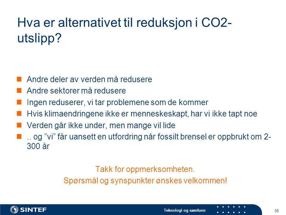 Hva er alternativet til reduksjon i CO2-utslipp