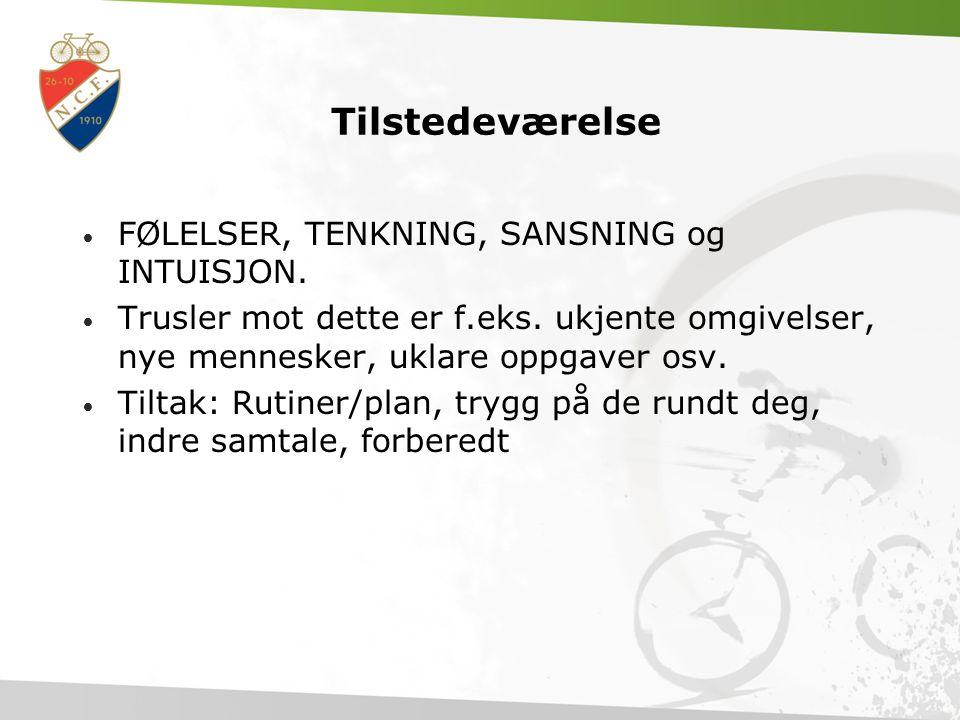 Tilstedeværelse FØLELSER, TENKNING, SANSNING og INTUISJON.