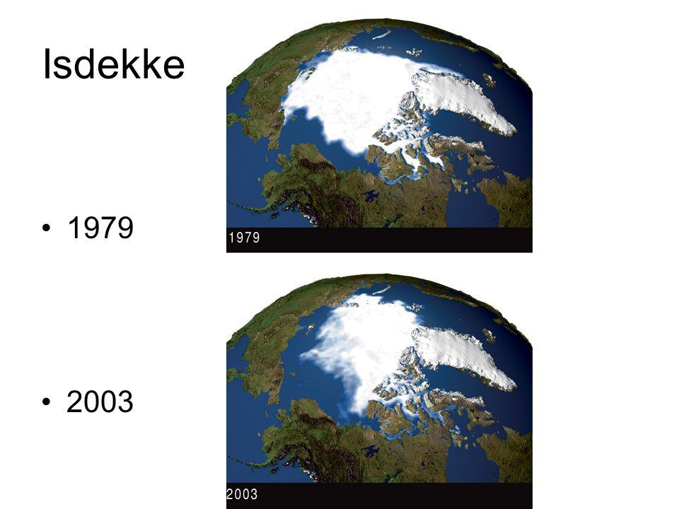 Isdekke 1979 2003