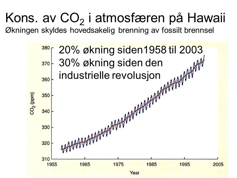 Kons. av CO2 i atmosfæren på Hawaii Økningen skyldes hovedsakelig brenning av fossilt brennsel