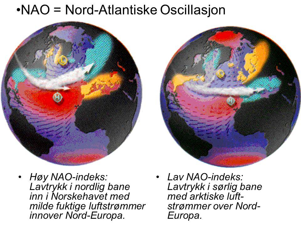 NAO = Nord-Atlantiske Oscillasjon