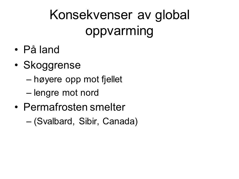 Konsekvenser av global oppvarming