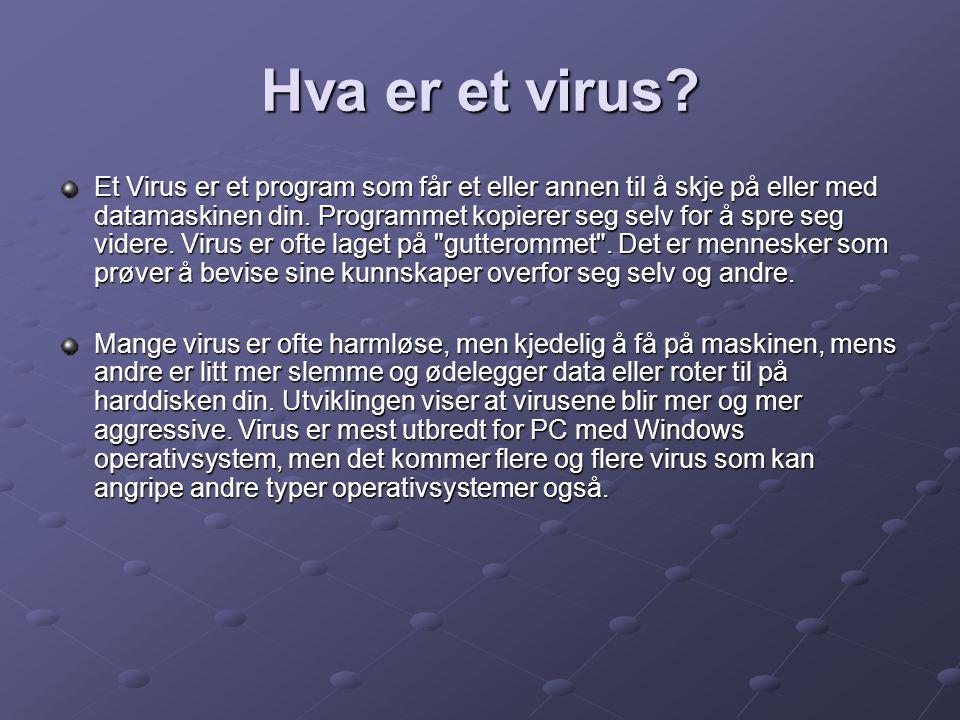 Hva er et virus