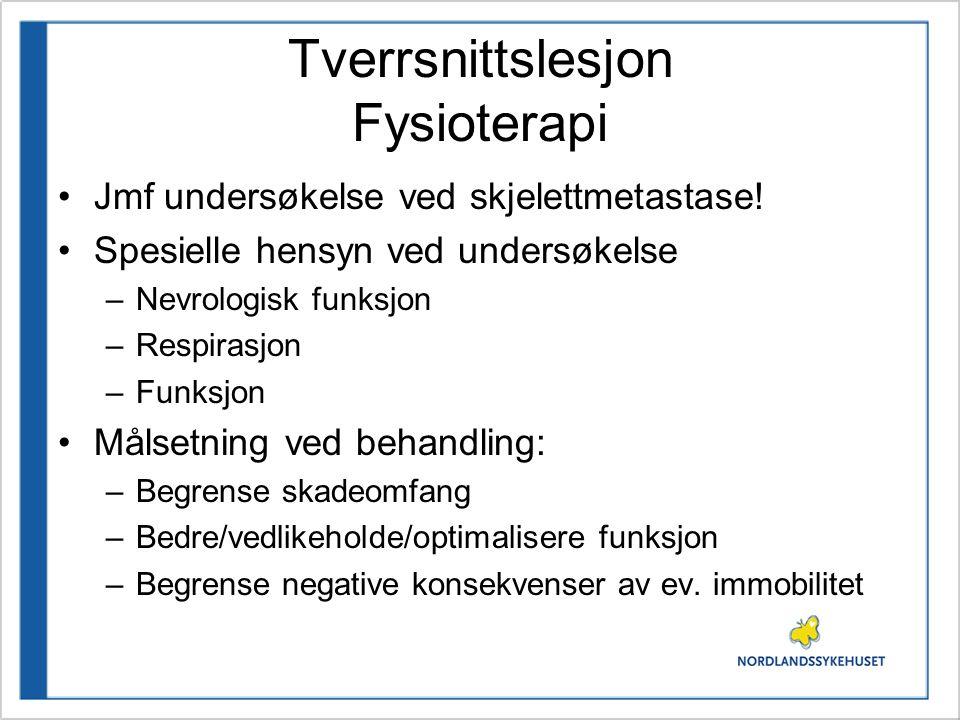 Tverrsnittslesjon Fysioterapi