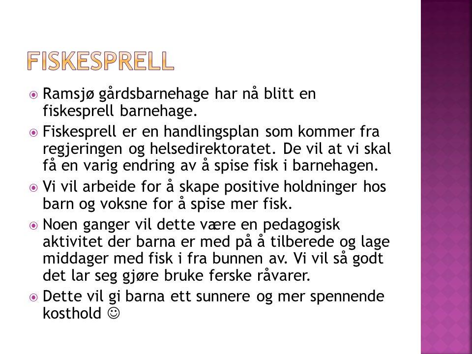 fiskesprell Ramsjø gårdsbarnehage har nå blitt en fiskesprell barnehage.