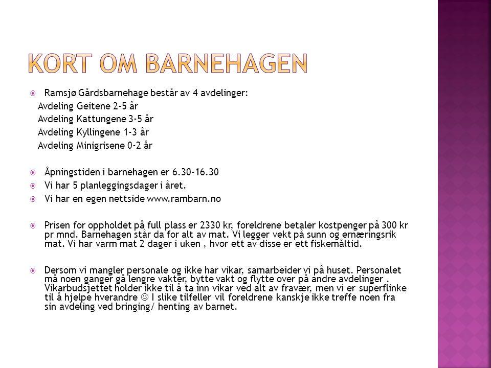Kort om barnehagen Ramsjø Gårdsbarnehage består av 4 avdelinger: