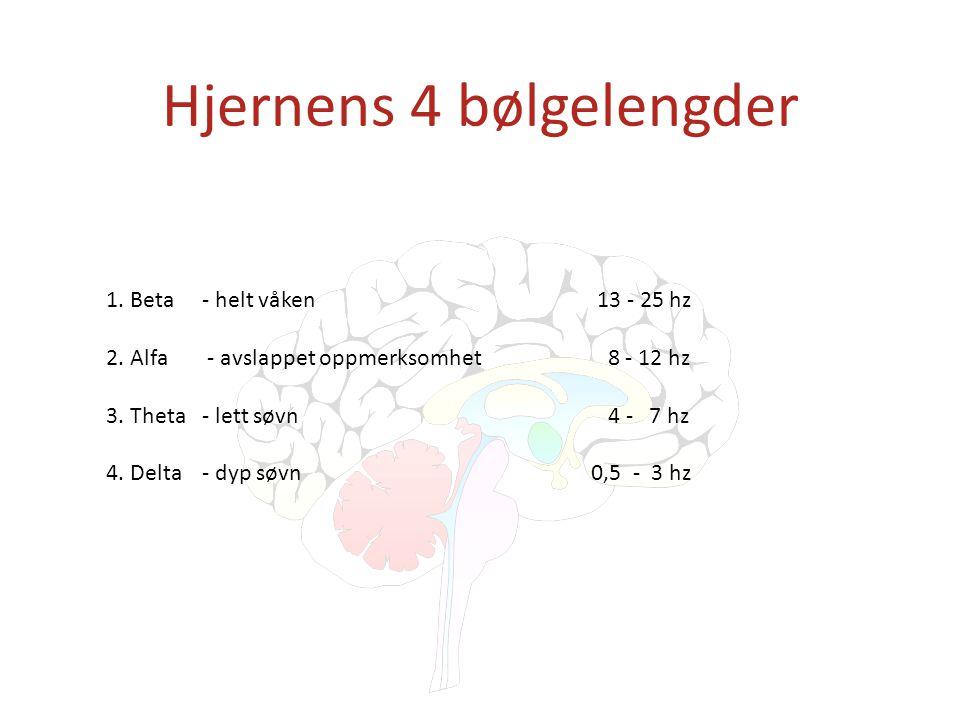 Hjernens 4 bølgelengder