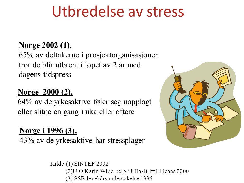 Utbredelse av stress Norge 2002 (1).
