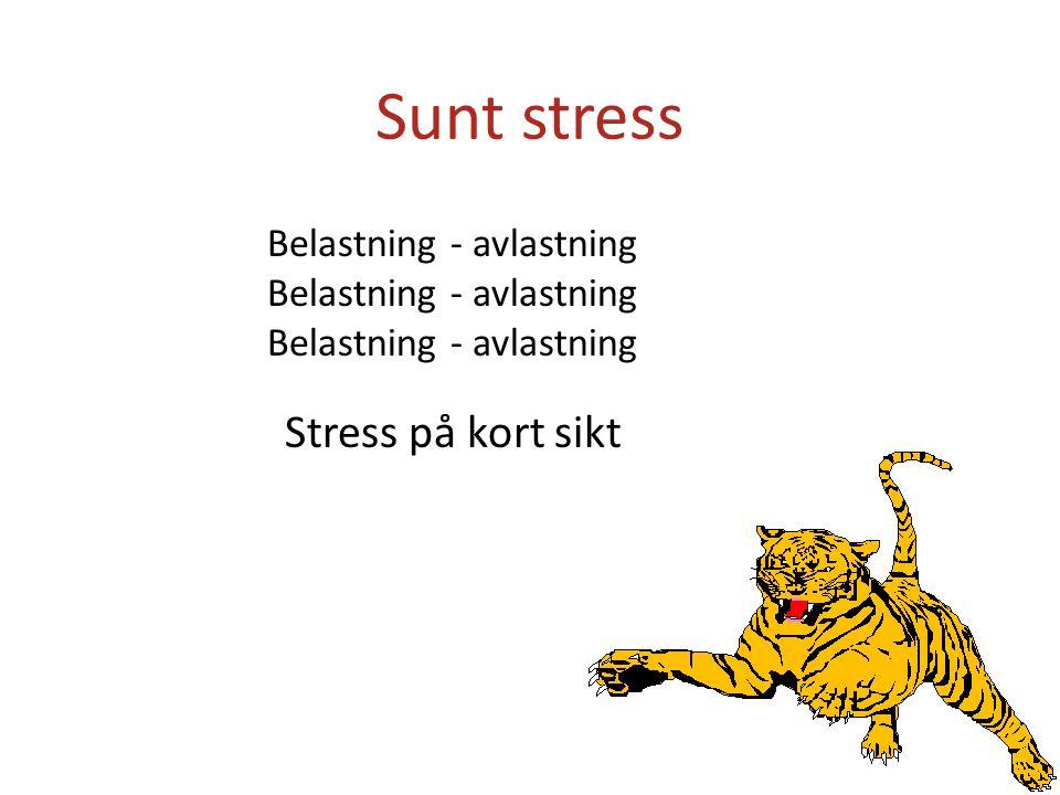 Sunt stress Stress på kort sikt Belastning - avlastning