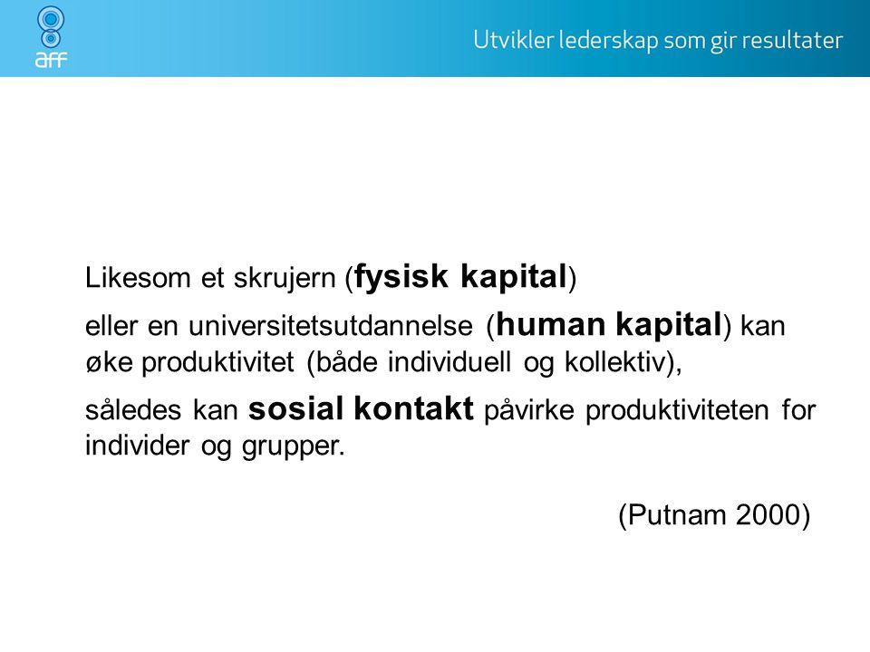 Likesom et skrujern (fysisk kapital) eller en universitetsutdannelse (human kapital) kan øke produktivitet (både individuell og kollektiv), således kan sosial kontakt påvirke produktiviteten for individer og grupper.