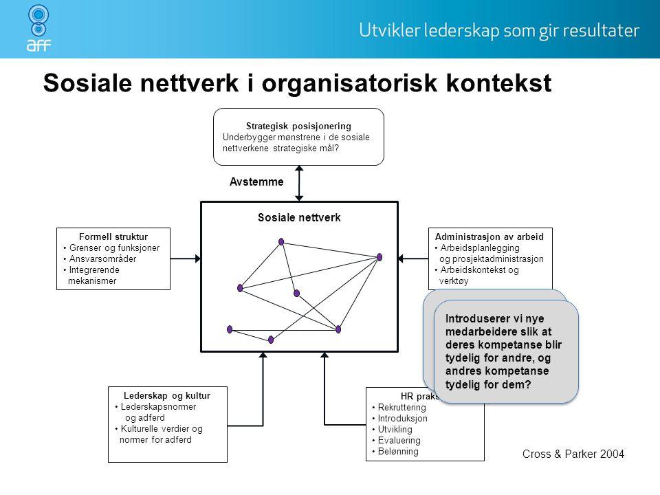 Sosiale nettverk i organisatorisk kontekst