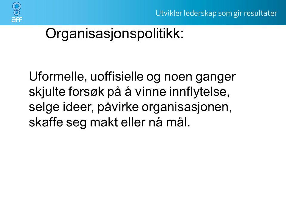 Organisasjonspolitikk:
