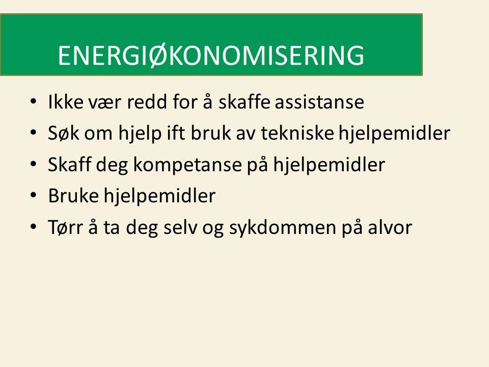 ENERGIØKONOMISERING Ikke vær redd for å skaffe assistanse